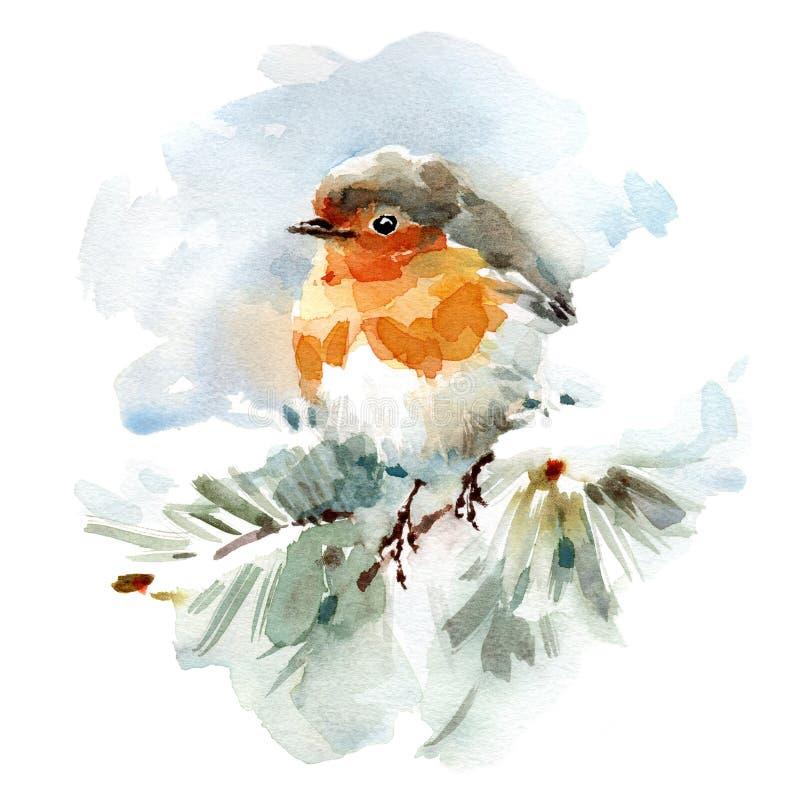 Robin Bird que se sienta en la mano nevosa del ejemplo del invierno de la acuarela de la rama dibujada stock de ilustración