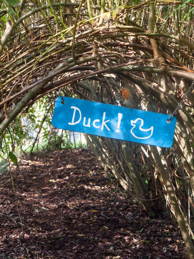 robin bird on a sign blue duck nature reserve dedham stock image