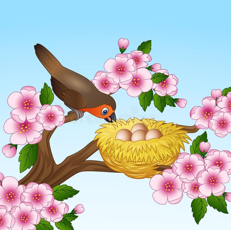 Robin with egg in the nest isolated on white background stock illustration