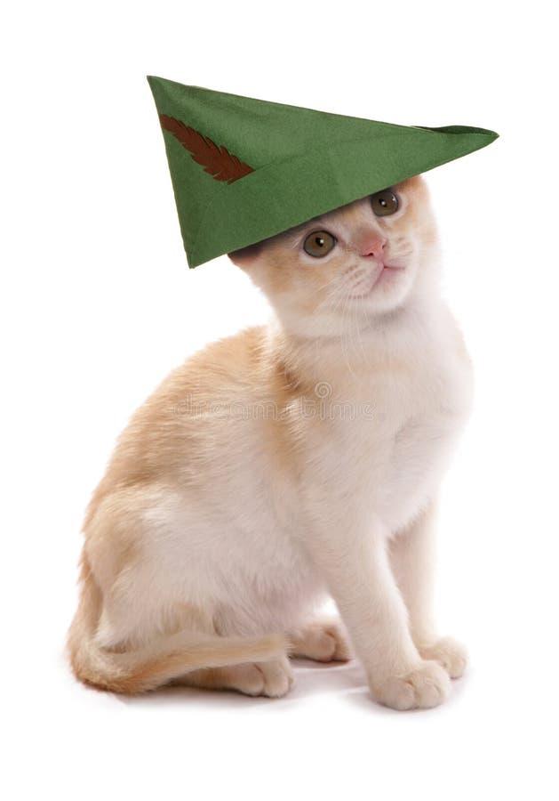 Robin Hood kattunge arkivfoto