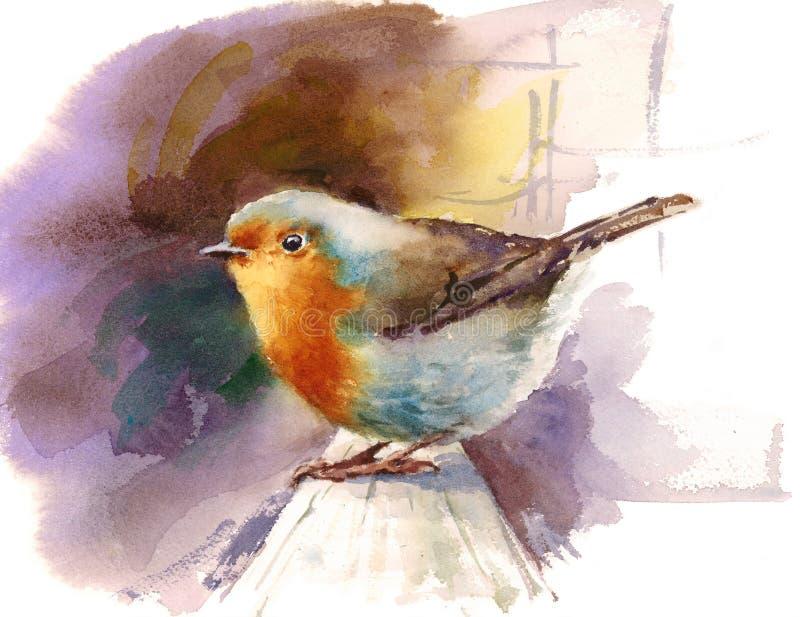 Robin Watercolor Bird Illustration Hand malte lizenzfreie abbildung