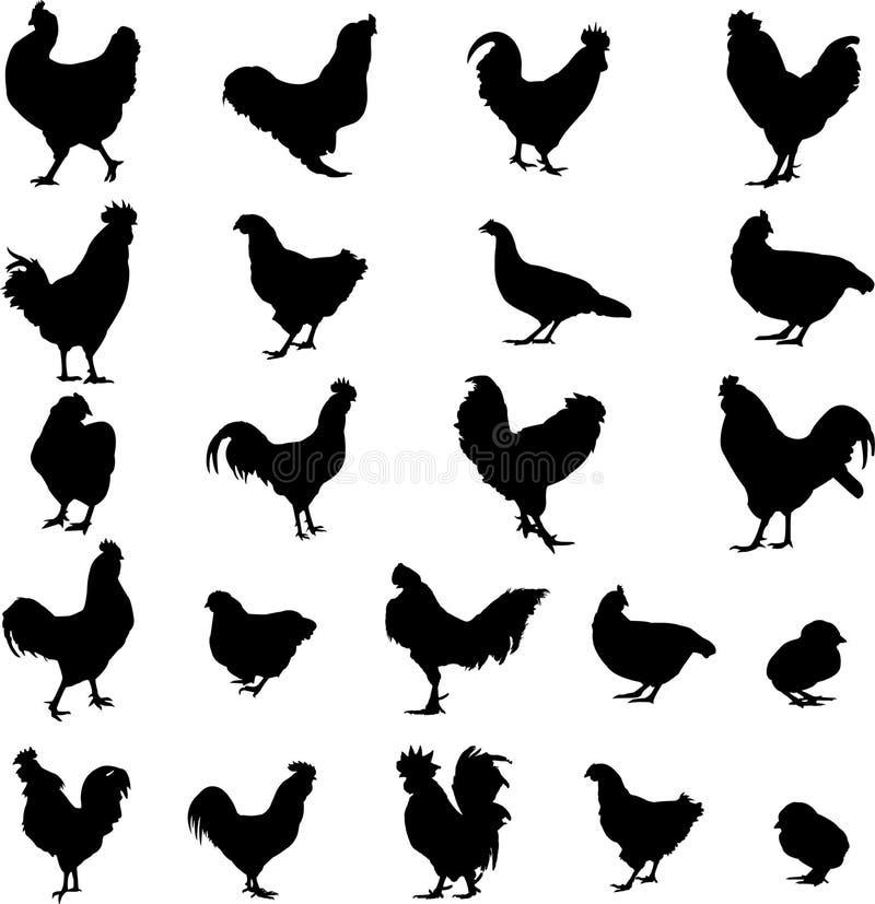 Robinet, poule et nana d'animal de ferme illustration de vecteur