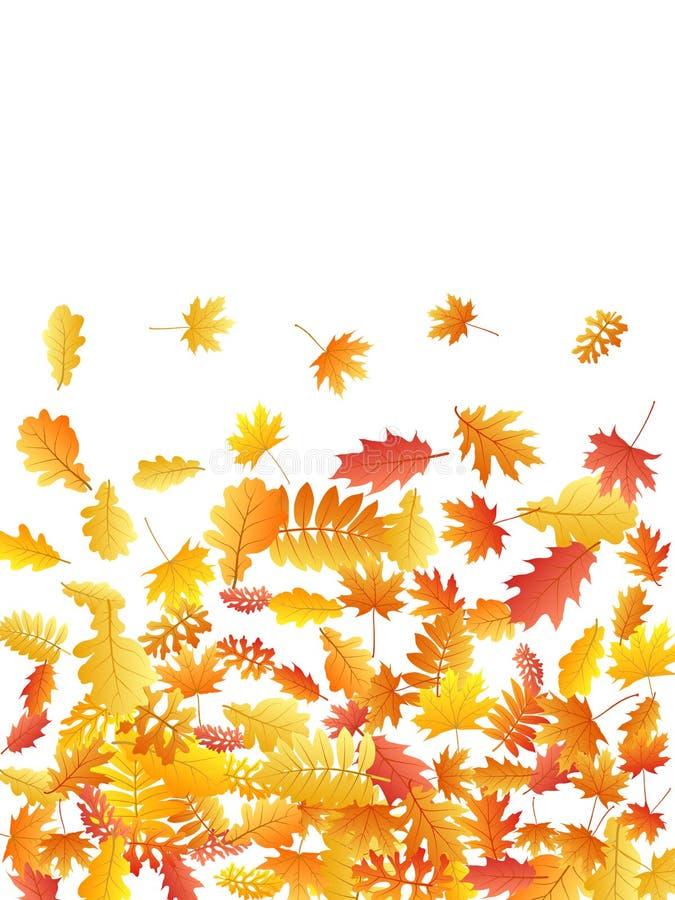 Roble, arce, hojas salvajes del serbal de la ceniza libre illustration
