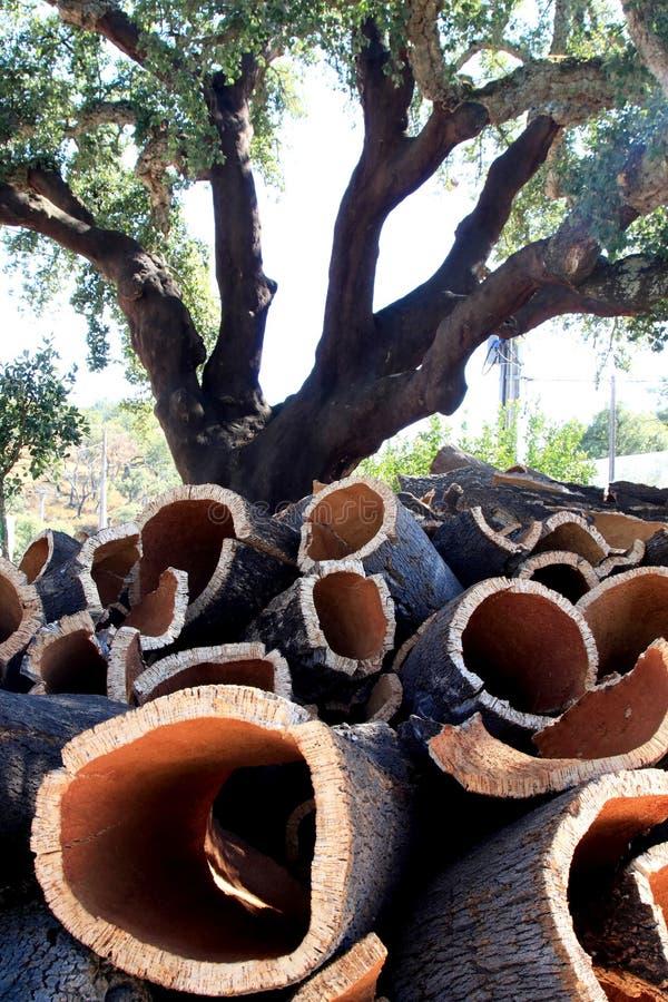 Roble de corcho y corteza empilada en Alentejo, Portugal foto de archivo libre de regalías