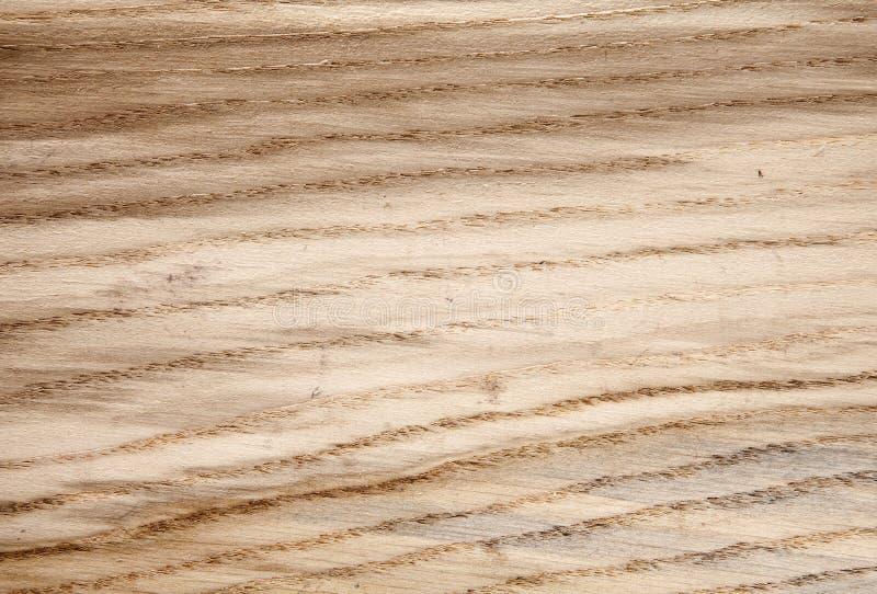 Roble de madera de la textura foto de archivo libre de regalías