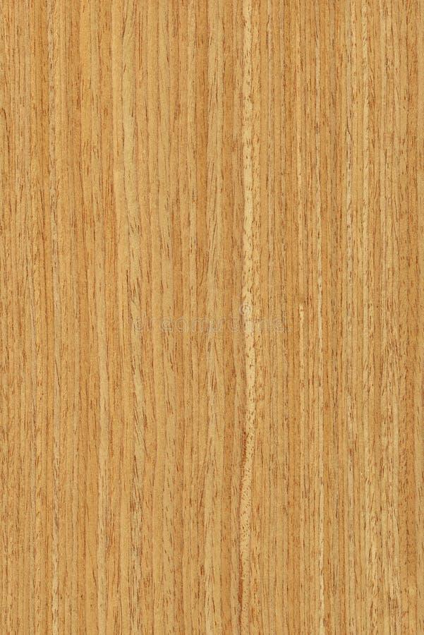 Roble Textura De Madera Imagen De Archivo Imagen De