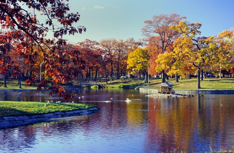 Robles parque, Portland, Maine de Deering imagenes de archivo