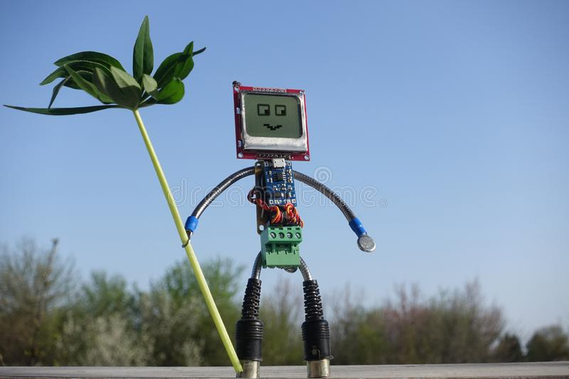 Robot made of parts of circuit boards on green grass. Android in the garden eco-friendly concept royalty free stock images