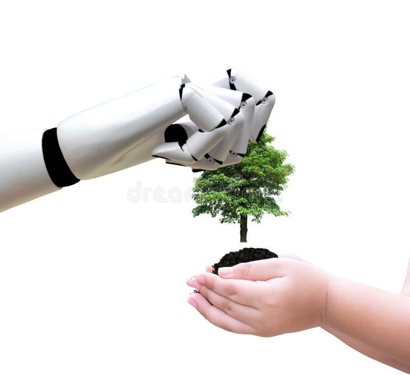 Robot ręka trzyma drzewnego środowisko i technologię stawia je w ręki obrazy royalty free