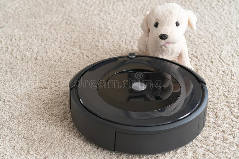 Robot vacuum cleaner with a dog on a clean beige carpet. The concept of cleanliness and comfort at home stock image