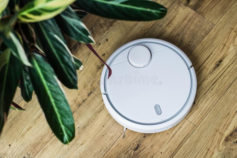 Robot vacuum cleaner on wooden floor. The view from the top. Smart home concept. Automatic cleaning stock photo