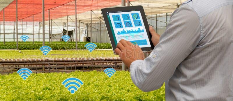Robot 4 van de Iot slimme industrie 0 het landbouwconcept, industriële agronoom die, landbouwer te controleren tablet gebruiken,  stock foto