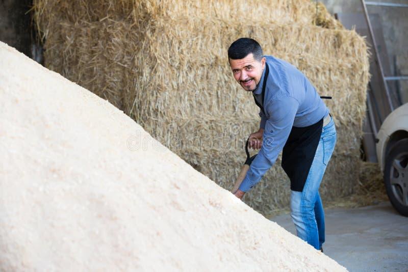 robotnik rolny trzyma dużą łopatę zdjęcia stock