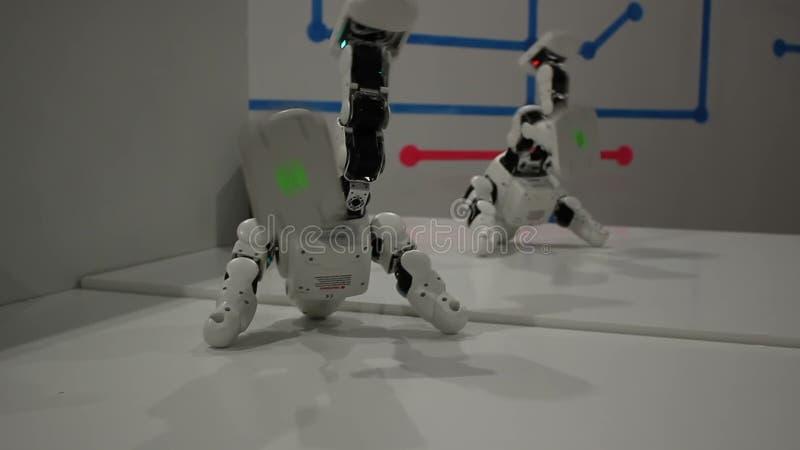 Robots blancs drôles de danse clips vidéos