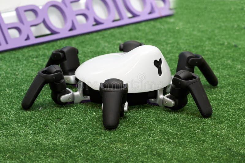 Robotspindel på utställningen fotografering för bildbyråer