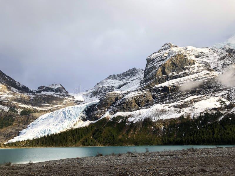 Robson Glacier lizenzfreie stockbilder