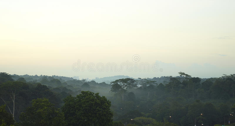 Rocío de la mañana de Singapur fotografía de archivo libre de regalías
