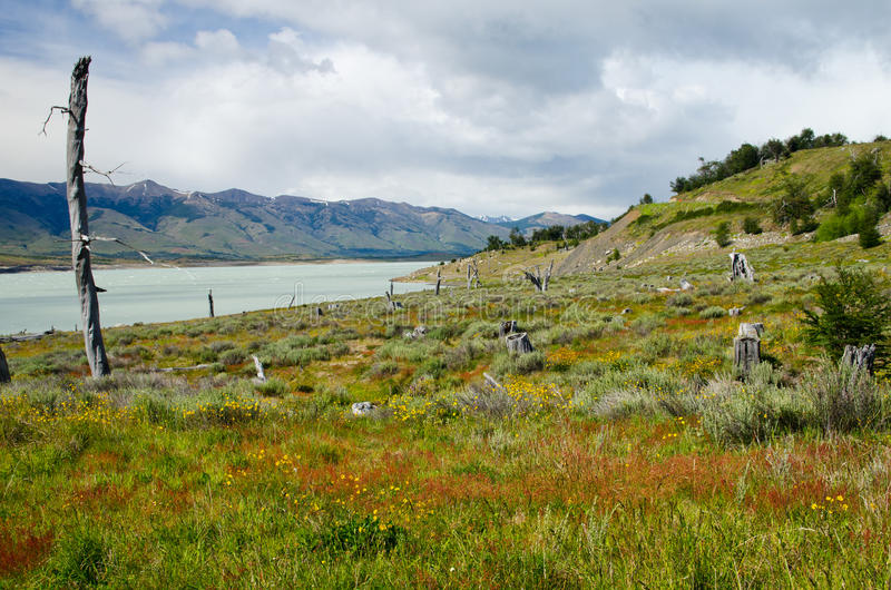 Roca湖, Lago阿根廷的南胳膊南Patagoni的 免版税库存照片