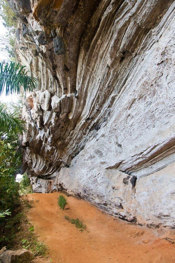 Roca curvada en una selva, Cuba imágenes de archivo libres de regalías
