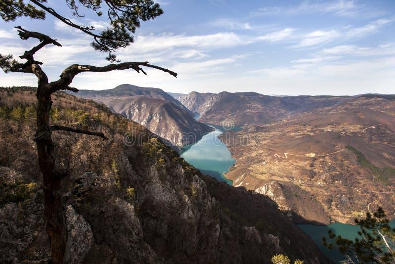 Roca de Banjska del punto de vista en la montaña de Tara que mira abajo al barranco del río de Drina, Serbia del oeste foto de archivo
