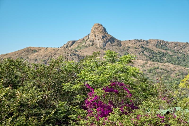 Roca de la ejecución de la reserva de naturaleza del mantenga de Suráfrica Swazilandia imagenes de archivo