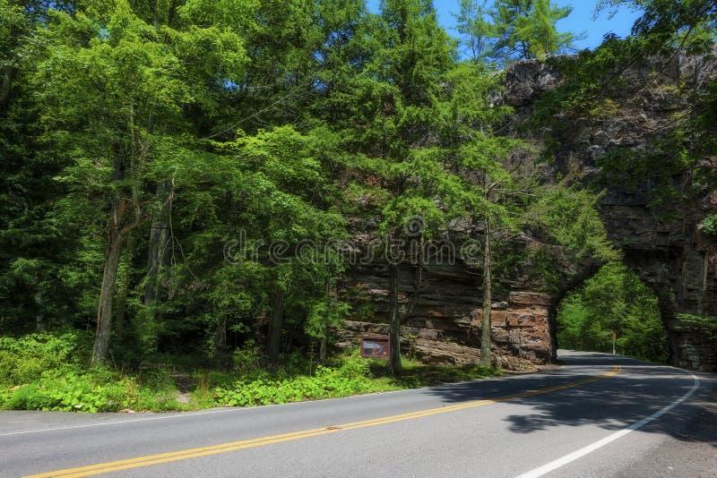 Roca de la espina dorsal en el bosque del Estado cherokee imagenes de archivo
