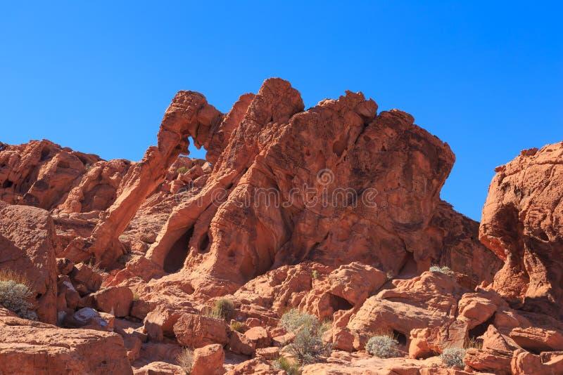 Roca del elefante, valle del fuego foto de archivo