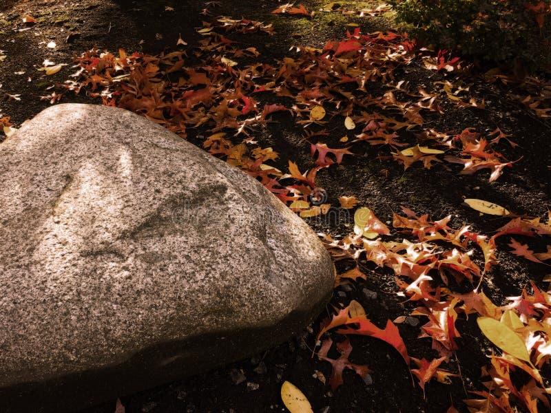Roca en otoño foto de archivo libre de regalías