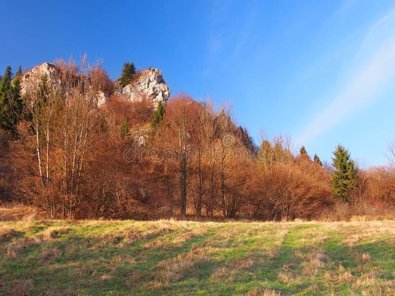 Roca en Tupa Skala, Vysnokubinske Skalky foto de archivo libre de regalías