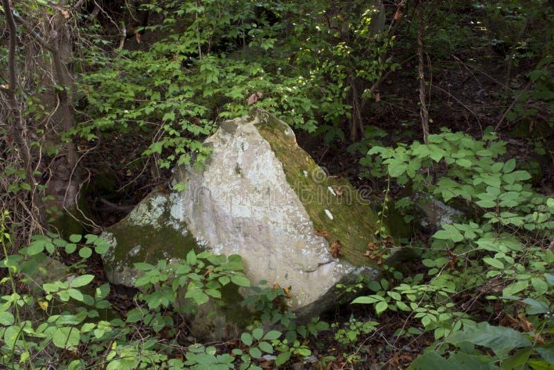 Roca grande en bosque imágenes de archivo libres de regalías