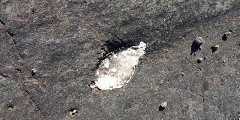 Roca negra con la pieza natural de la piedra de la chispa de la pizca de lakhnadon la India, imagen tomada en 2018 fabuary, paisa imagen de archivo