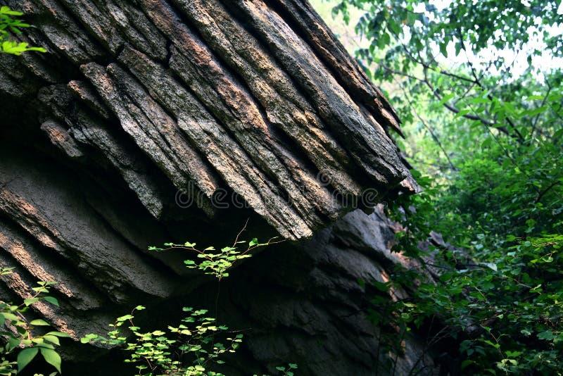 Roca sedimentaria fotografía de archivo