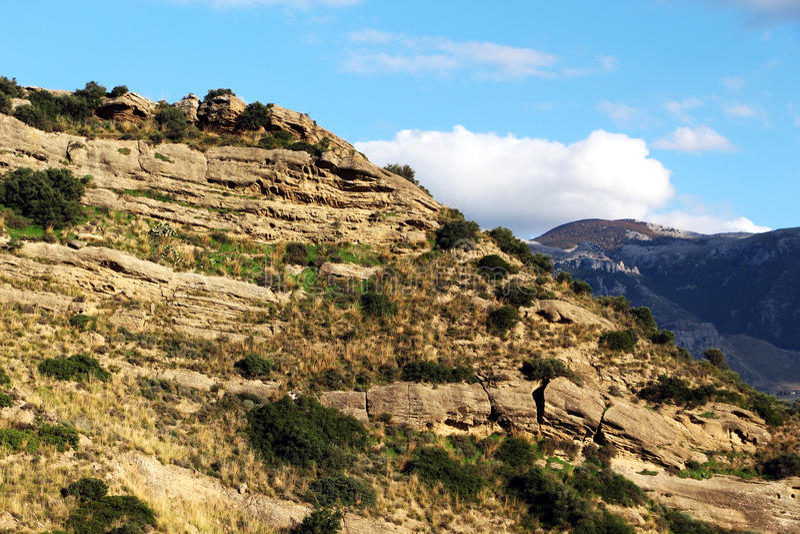 Roca sedimentaria calc rea con fracturas imagen de for Roca de guia