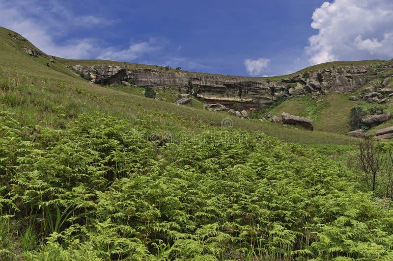 Download Roca Sedimentaria Interesante En El Castillo De Giants Imagen de archivo - Imagen de nativo, gigantes: 41905735