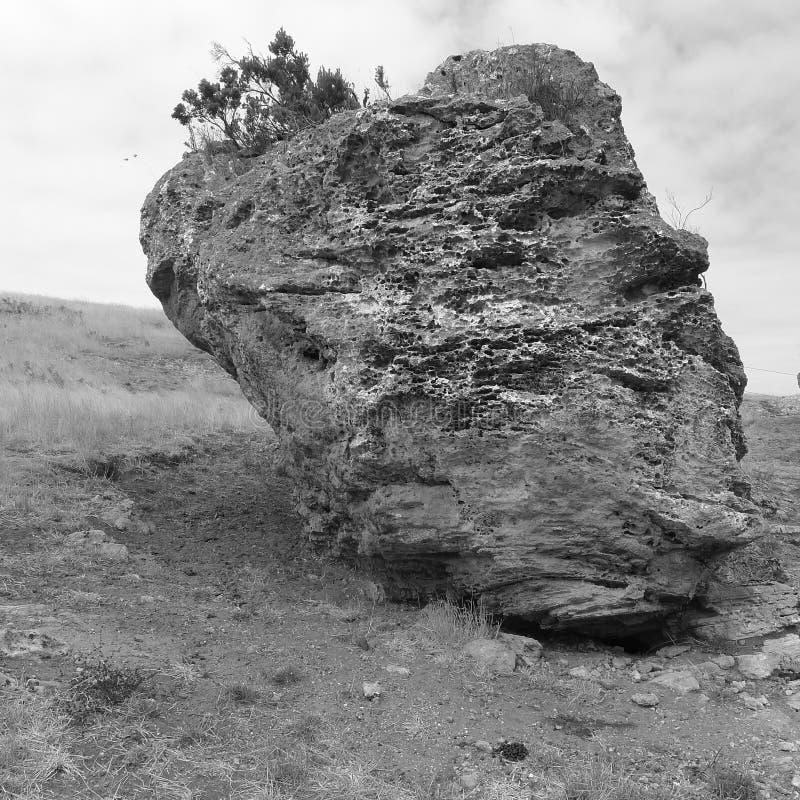 Roca Textured fotografía de archivo libre de regalías