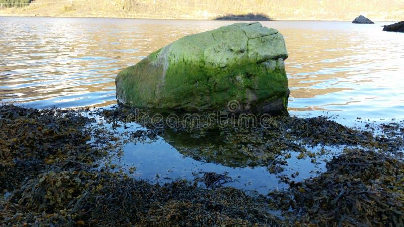 Roca verde en el mar imagen de archivo