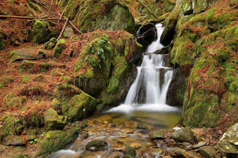 Roca y cascada cubiertas de musgo foto de archivo libre de regalías
