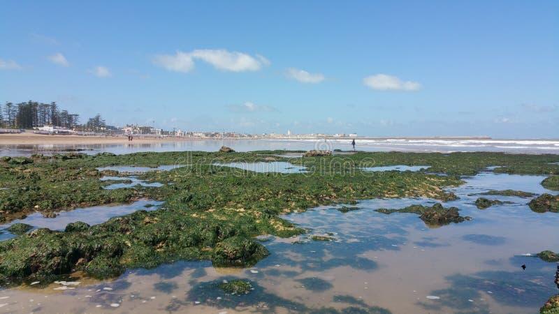 Roca y mar en el jadida Marruecos del EL foto de archivo libre de regalías