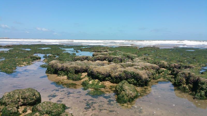 Roca y mar en el jadida Marruecos del EL foto de archivo