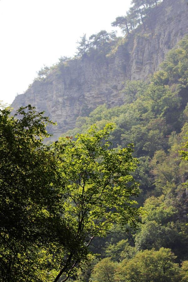 Rocas blancas Otro nombre es Eagle Rocks Región de Krasnodar Acantilados absolutamente verticales, cubiertos con piedra caliza li fotografía de archivo