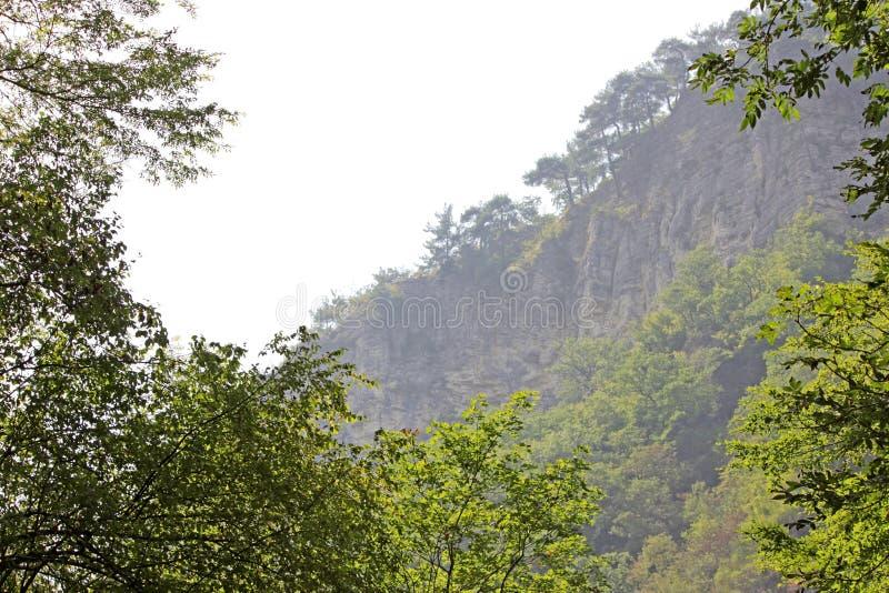 Rocas blancas Otro nombre es Eagle Rocks Región de Krasnodar Acantilados absolutamente verticales, cubiertos con piedra caliza li imagen de archivo libre de regalías