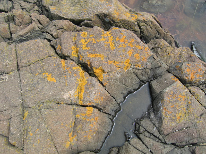 Download Rocas con el hongo imagen de archivo. Imagen de líneas - 176757