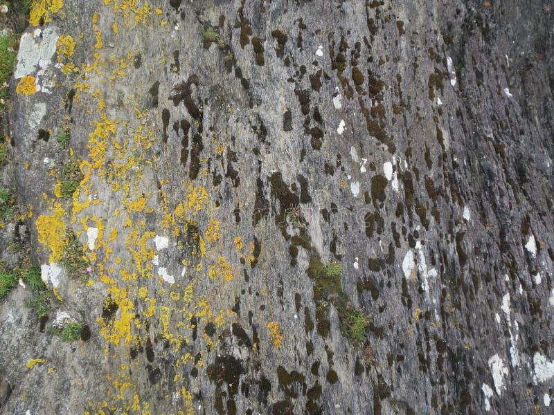 Rocas de Coastal del irlandés imagen de archivo libre de regalías