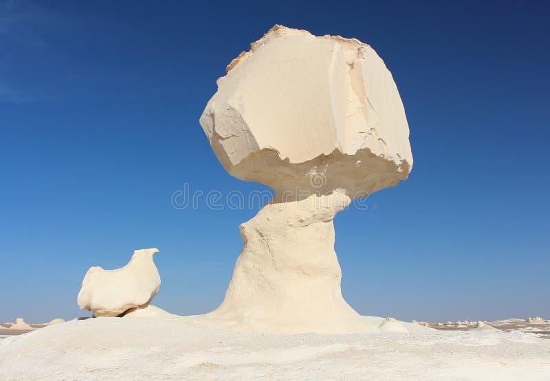 Rocas de la formación de la piedra caliza conocidas como la seta y el pollo en el parque natural del desierto blanco imagen de archivo