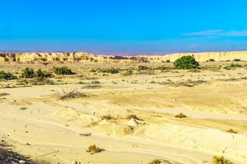 Rocas de la marga de Lissan y monta?as de Edom, el camino de la paz de Arava fotografía de archivo libre de regalías