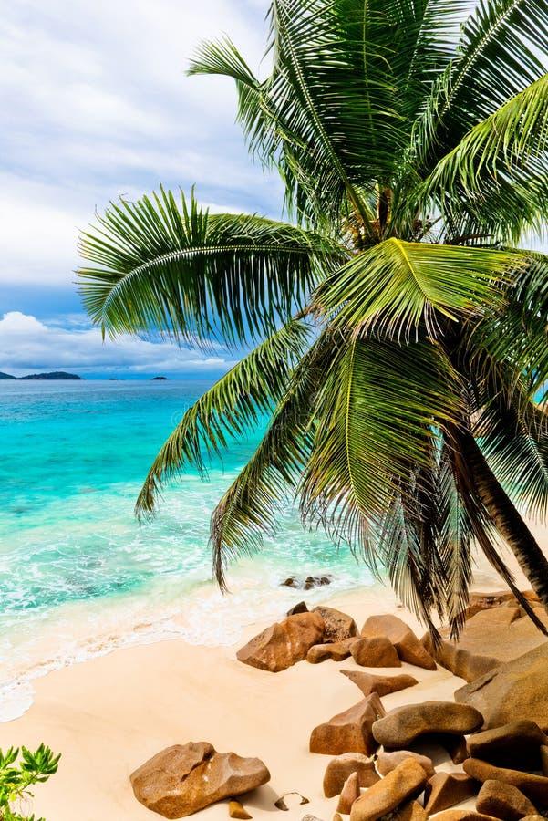 Rocas del granito en la playa Las Seychelles fotografía de archivo libre de regalías