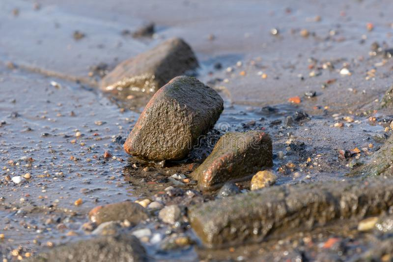 Rocas dispersadas a lo largo de la línea de la playa de un río foto de archivo libre de regalías