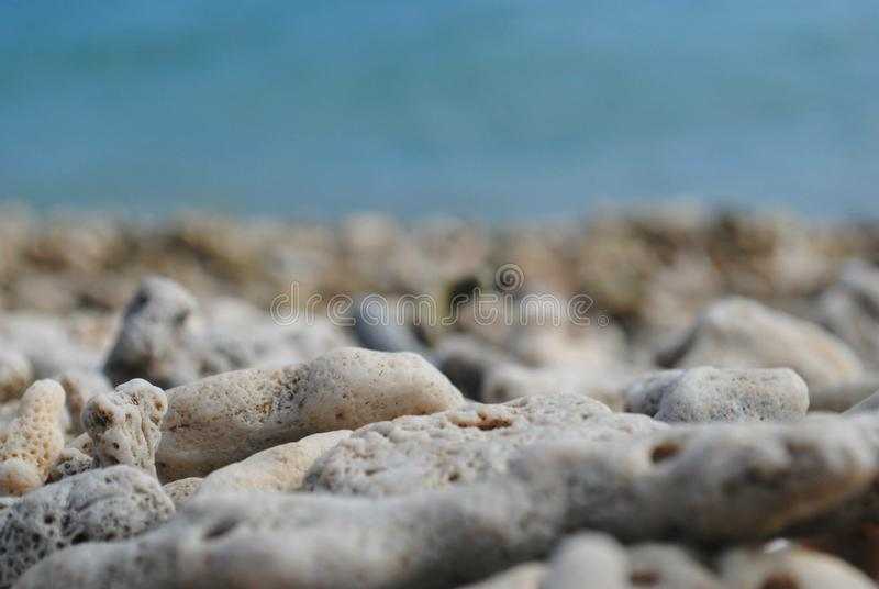 Rocas en la orilla de Australia fotografía de archivo
