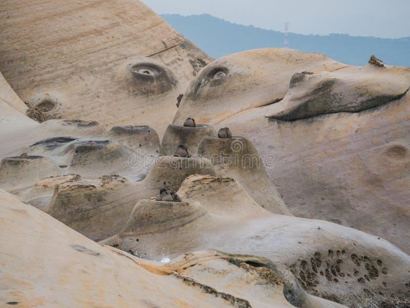 Rocas especiales, velas del mar en Yehliu Geopark imágenes de archivo libres de regalías
