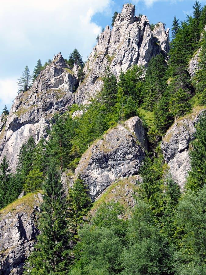 Rocas masivas en el valle de Vratna, Eslovaquia imágenes de archivo libres de regalías